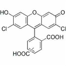 Picture of 5(6)-carboxyl-2',7'-dichlorofluorescein