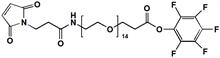 Picture of Maleimide-NH-PEG<sub>14</sub>-CH<sub>2</sub>CH<sub>2</sub>PFP Ester